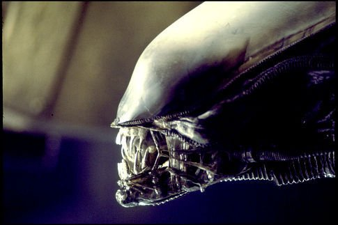 Ridley-Scott-Alien