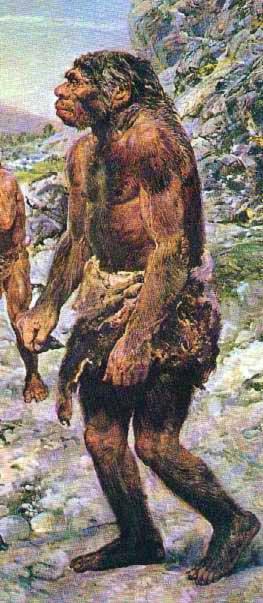 n-lhomme-de-neandertal-classique...